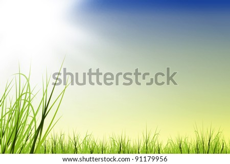 Grass field illustration with sun and space for text - stock photo