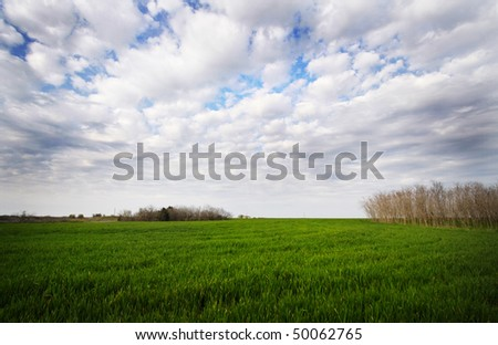 Grass field with dramatic clouds. - stock photo