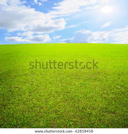 Grass fields and sun sky - stock photo