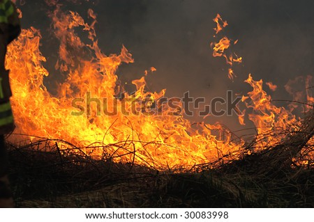 Grass fire with smoke - stock photo