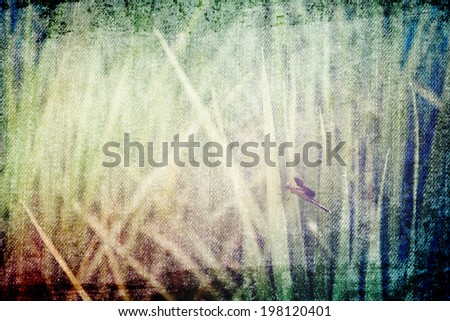 Grass flower and dragonfly in Vintage and pastel style for canvas background - stock photo