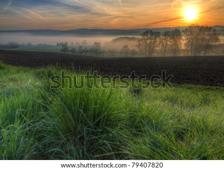 grass glistening with morning dew drops at sunrise at a field with foggy trees and hills in the background - stock photo