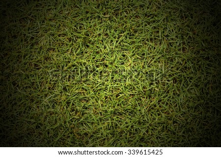 grass Golf Courses green lawn For background