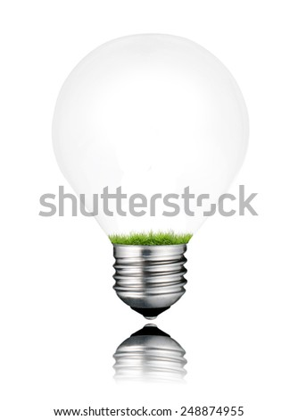 Grass Growing Inside Light Bulb Isolated on White Background. Light bulb has a reflection - stock photo