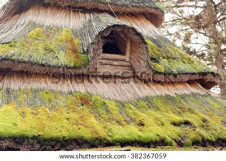 Grass house roof. Old house roof made of dry grass. - stock photo
