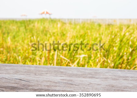 Grass in lake and pavilion background with wooden plank. - stock photo
