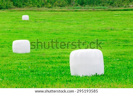 Grass in plastic Silage Balls in Sweden