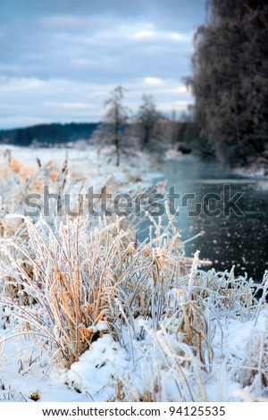 Grass in rime frost in beautiful winter landscape - stock photo