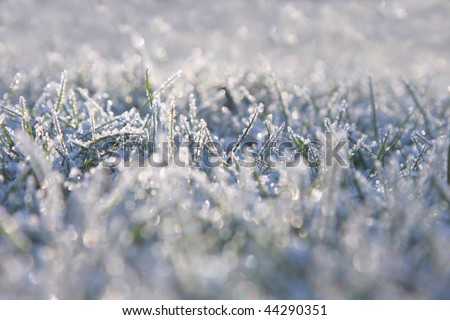 Grass is frozen, extreme depth of field is used and lots of attractive lens flare is present. - stock photo