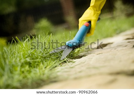 grass lawn trimming, garden shears and hand in glove - stock photo