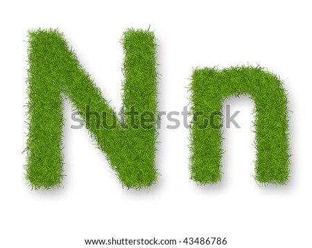 Grass lower-case and upper-case letter N