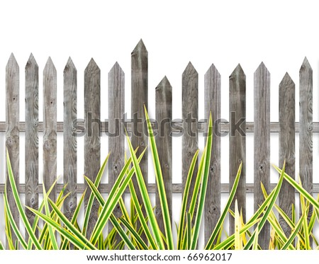 Grass, Old wooden fence isolate over white background - stock photo