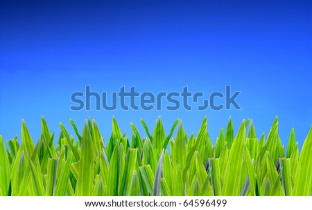 grass on blue screen