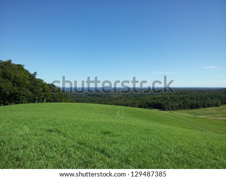 Grass on Hillside