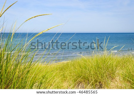 Grass on sand dunes at beach. Pinery provincial park, Ontario Canada - stock photo