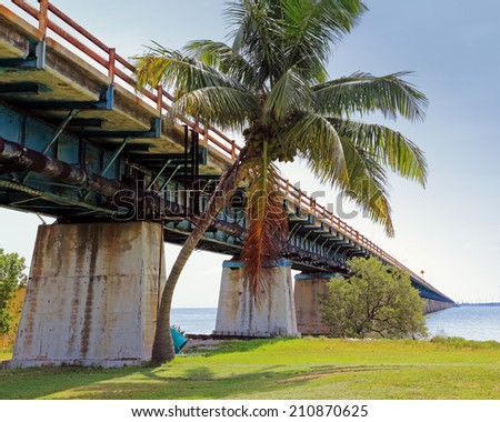 Grass, palm trees, and the old Overseas Highway adorn historic Pigeon Key in Florida. - stock photo