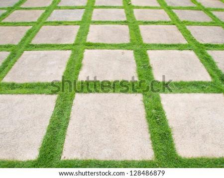 Grass road - stock photo