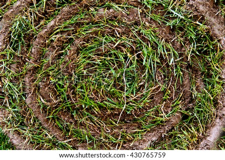 grass roll cross section