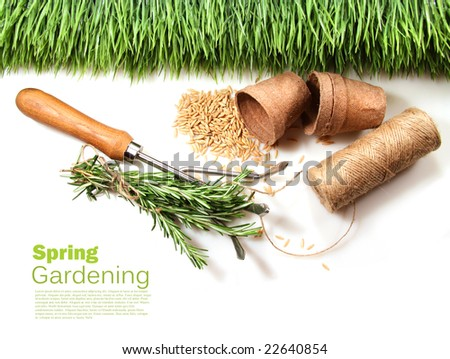 Grass, seeds, cord and peat pots for spring on white - stock photo