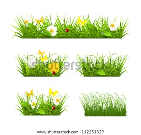 Grass set, bitmap copy - stock photo