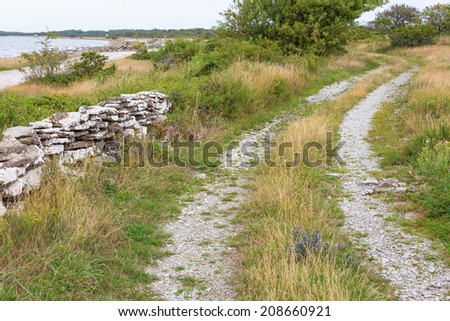 Grass shoulder road through the meadow at the shore - stock photo
