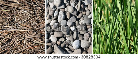 grass, stone, wood - stock photo