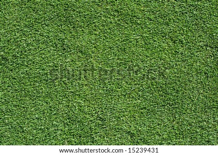 grass texture from a golf putting green - stock photo
