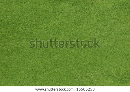 Grass texture on a golf field, background pattern - stock photo