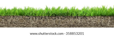 grass with roots and soil  - stock photo