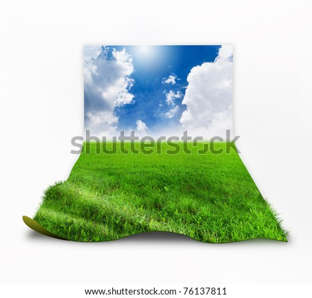 Grass with sky background image