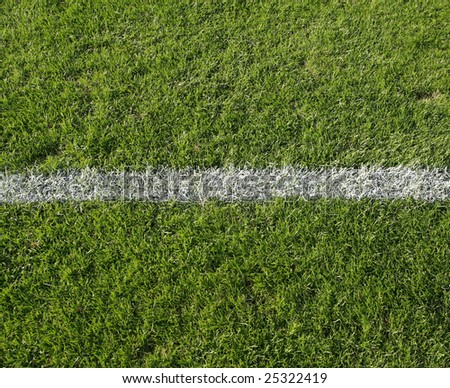 grass with white line - stock photo