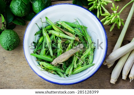 grasshopper insect in iron bowl, Thai food. - stock photo