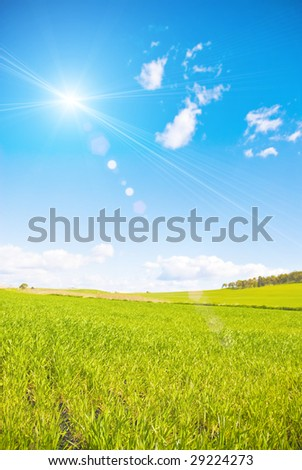 Grassland and sunray - stock photo