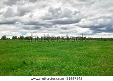 Grassland. Green meadow bordered by forest under cloudy sky