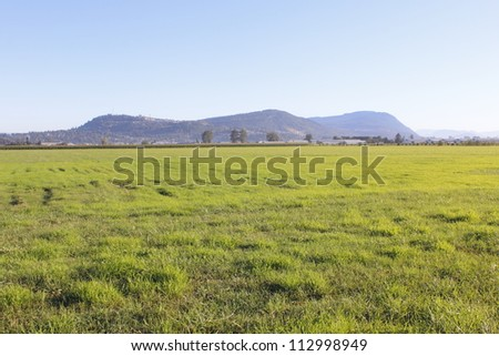Grassland in British Columbia's Fraser Valley Area/BC Grassland/Acres of grassland in British Columbia's Fraser Valley - stock photo