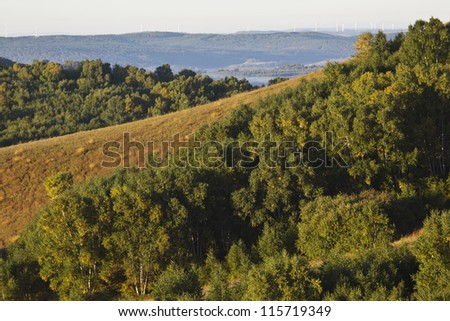 grassland in the northeast of china - stock photo