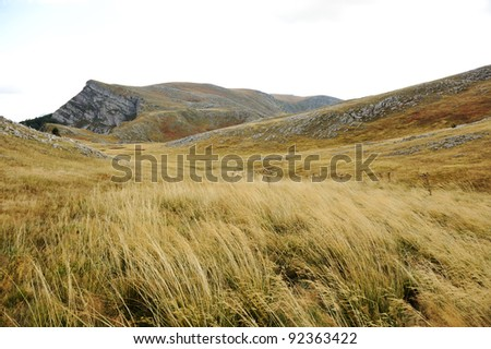 Grassland on mountains in autumn - stock photo