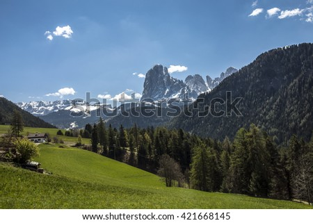 Grassy alpin lanscape with a big peak, named Sassolungo Langkofel in the background.