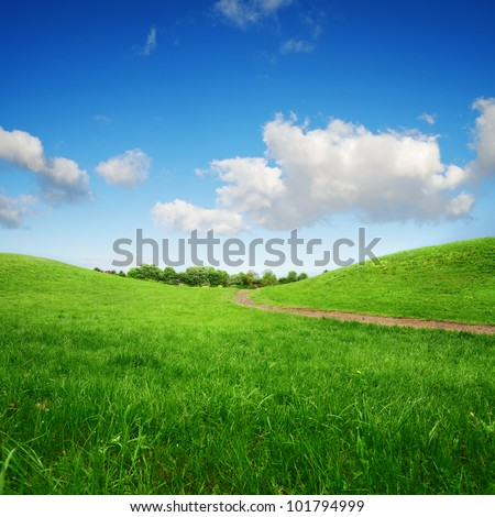 grassy green hills and lane to remote trees on blue sky background - stock photo