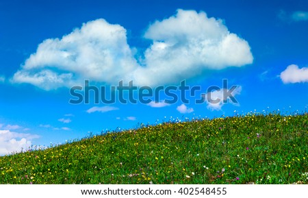 Grassy hill, wild flowers, and a cloudy blue sky.  Nature photograph.