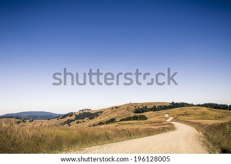 Grassy Plane and Dirt Road in California Redwood State Park Elk Meadow - stock photo