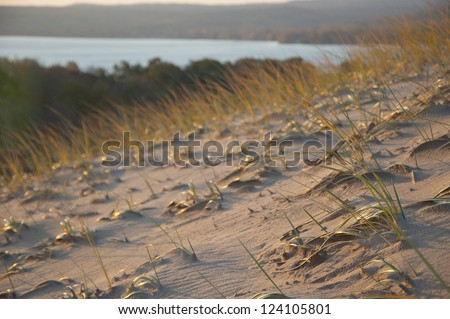Grassy sand dune in morning light - stock photo