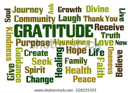Gratitude word cloud on white background - stock photo