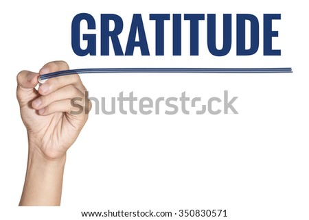 Gratitude word written by man hand holding blue highlighter pen with line on white background - stock photo
