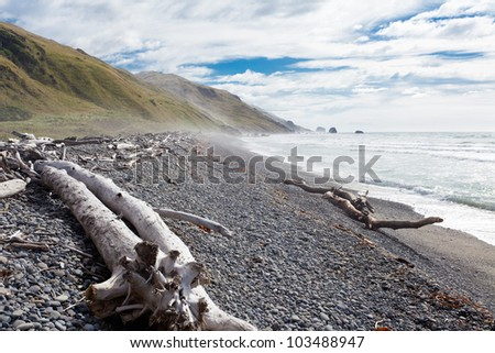 Gravel beach and driftwood in Gore Bay, East Coast of South Island, New Zealand