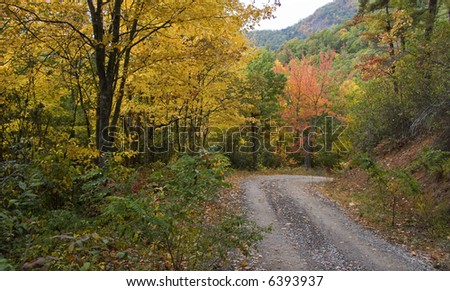 Gravel Country Road in the Mountains during Autumn