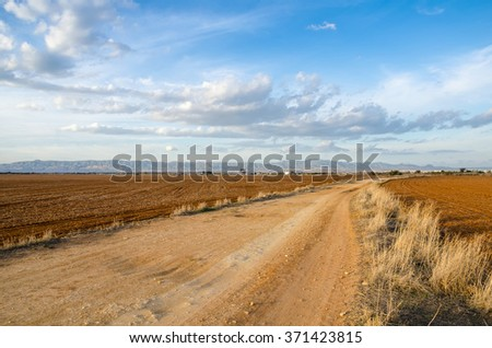 Gravel Road between Plowed Fields in Cyprus