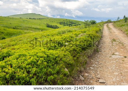 gravel road going off into the distance and passes through the green field in mountains - stock photo