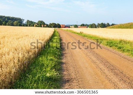 Gravel road in countryside landscape