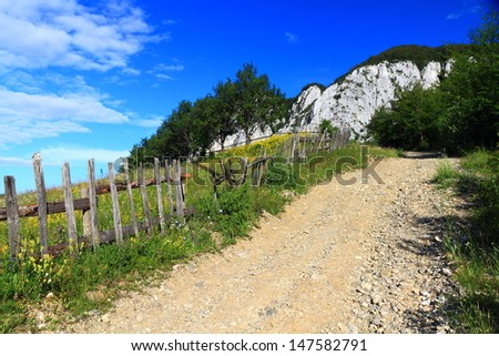 Gravel road near green meadow protected by wood fence - stock photo